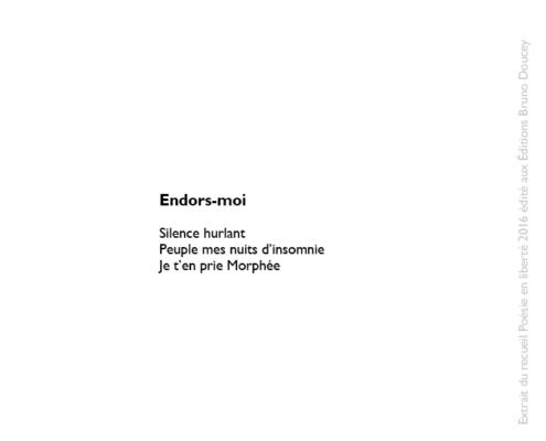 Endors-moi écrit par Christine Couture Blouin